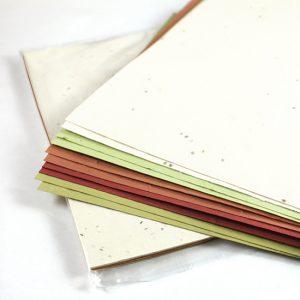 Papier ensemencé - Herbes et légumes